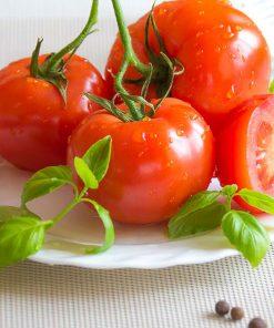 Семена за домати